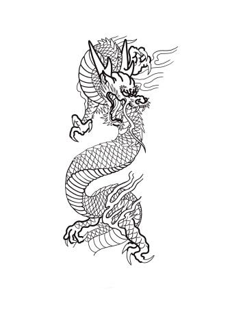 Dragon Tattoo Carlos aus Tokyo Cologne Tattoo 1